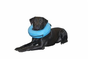 Kruuse Inflatable Collar