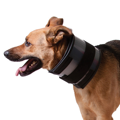 KVP Bite Free Collar
