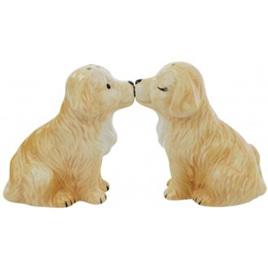 Labrador Retriever Salt & Pepper