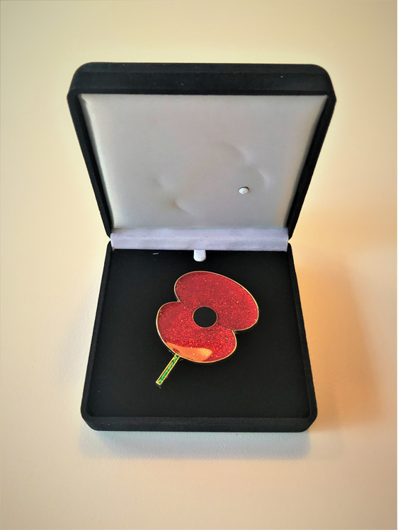 Lacquer Poppy Broach