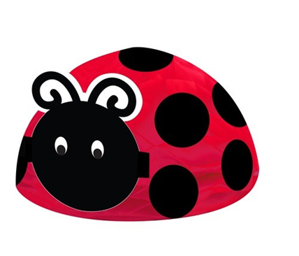Lady Bug Fancy Pop-up Centerpiece