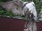 Landing Falcon on Post