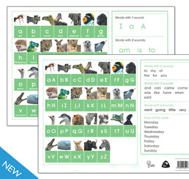 Lanky Hippo: Alphabet Letter Cards (A4 Pack)
