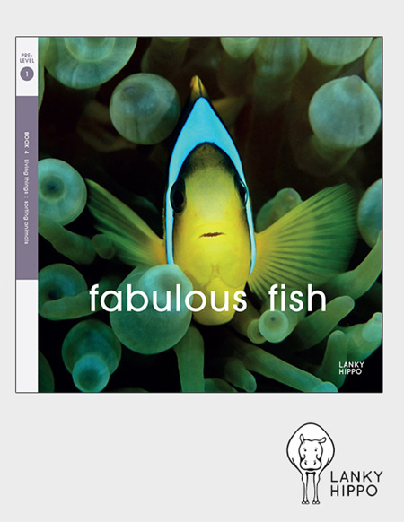 Lanky Hippo: Fabulous Fish