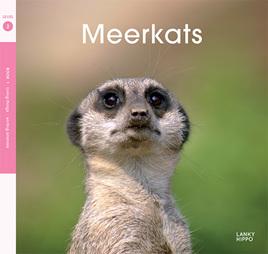 Lanky Hippo: Meerkats