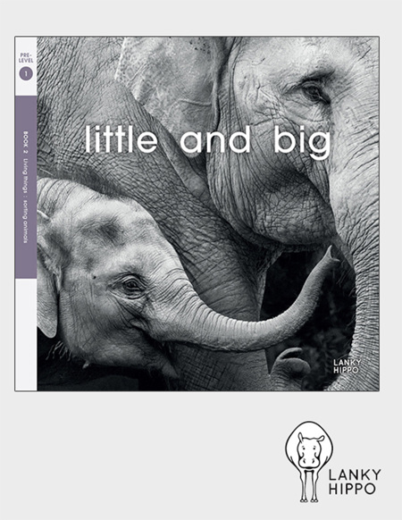 Lanky Hippo: Little and Big