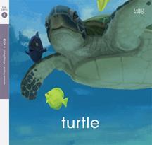 Lanky Hippo: Turtle