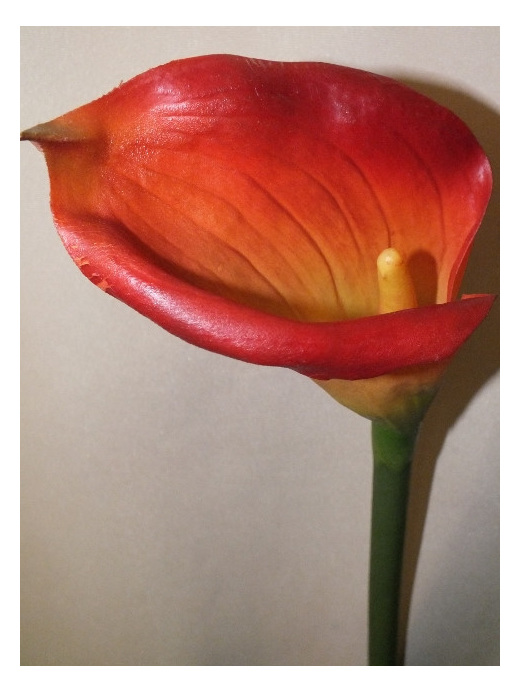 large headed calla lily orange  silk artificial fake not real
