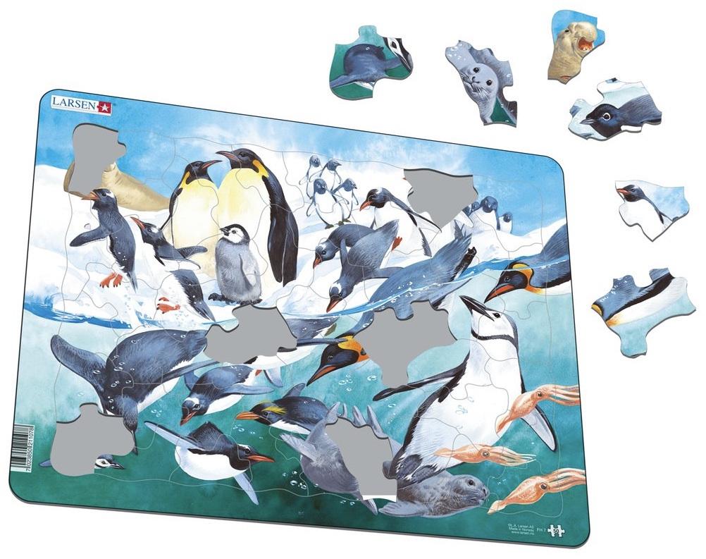 larsen tray jigsaw puzzle antarctic puzzlesnz
