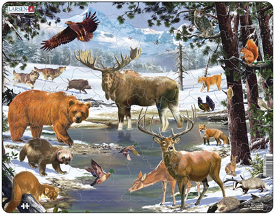 Larsen Tray Jigsaw Puzzle North Forest