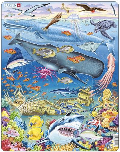 Larsen Tray Jigsaw Puzzle Pacific Ocean Wildlife