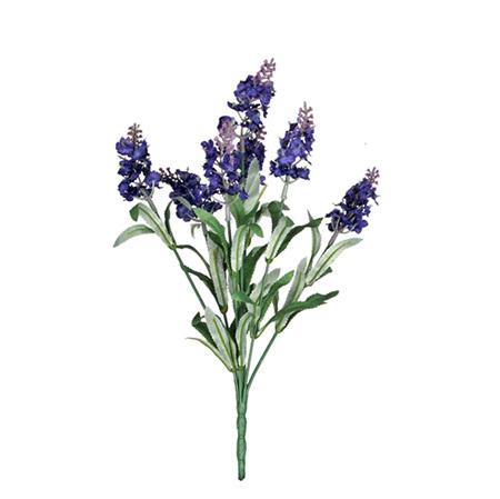 Lavender Bush Deep Purple 4286