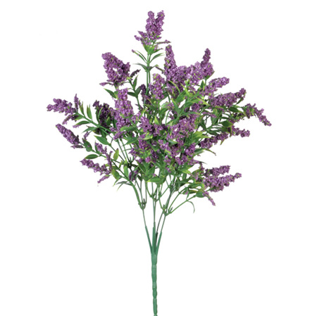 Lavender Bush Purple 4383