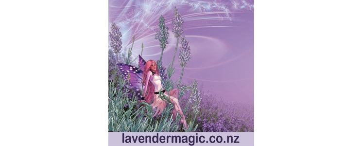 Lavender Magic