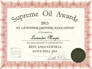 Lavender Magic Gold - Avice Hill