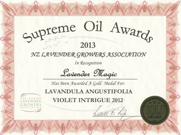 Lavender Magic wins Gold with Violet Intrigue