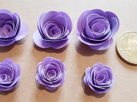 Lavender mini roses