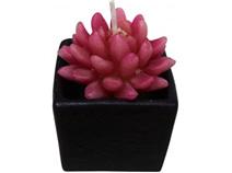Lavida Candle Succulent-B Sm