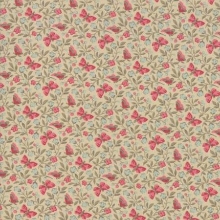 Le Beau Papillon Aricia Oyster 13864-16