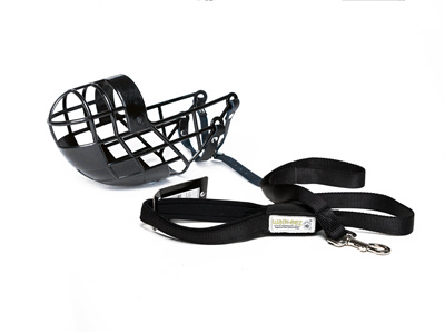 Leads and muzzles