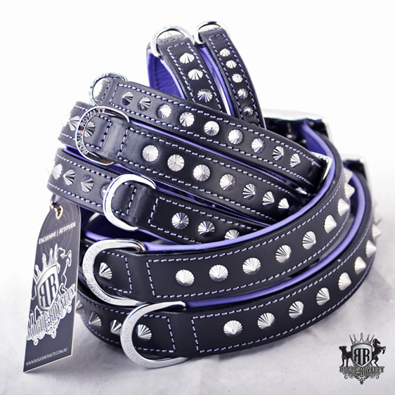 Leather Dog Collar with Coloured Backing and Studs
