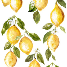 Lemon Drops IOD Decor Transfer