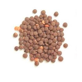 Lentils Brown Dried Organic Approx 100g