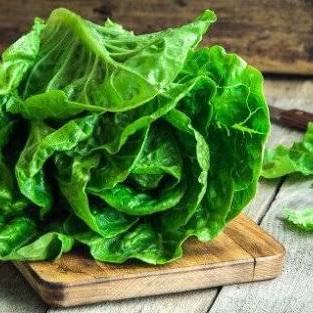 Lettuce Green  Certified Organic Each