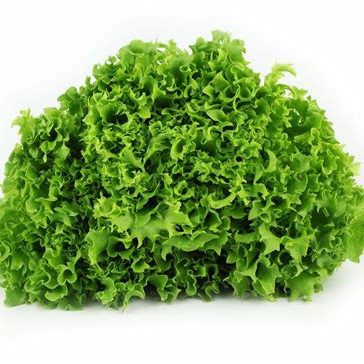 Lettuce Green Fancy Organic Each