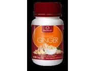 Lifestream Bioactive Ginger