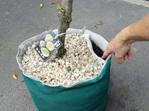Lift the MulchMat to check soil moisture