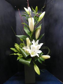 Lily Arrangement