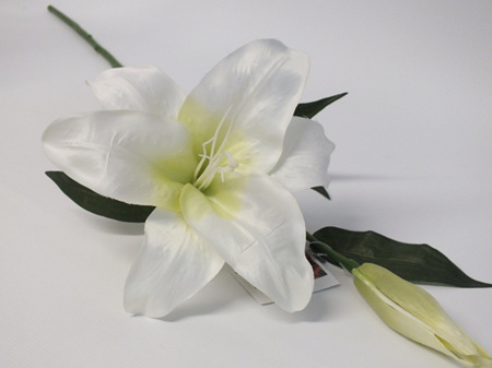 Lily Oriental Stem white 4204
