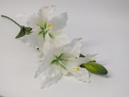 Lily Oriental White 4511