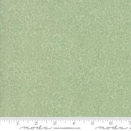Lily Sage 33501-13