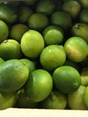 Limes 5Kg Carton