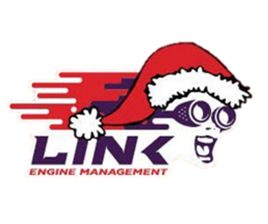 Link Christmas Sale