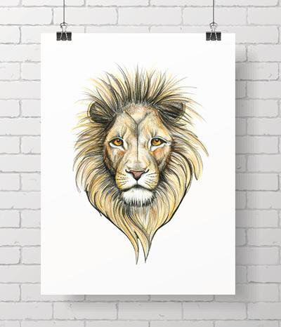 lion on white