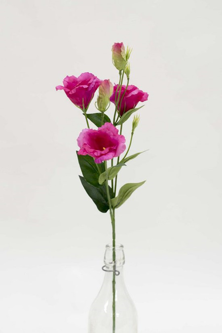 Lisianthus spray Fuschia 4075