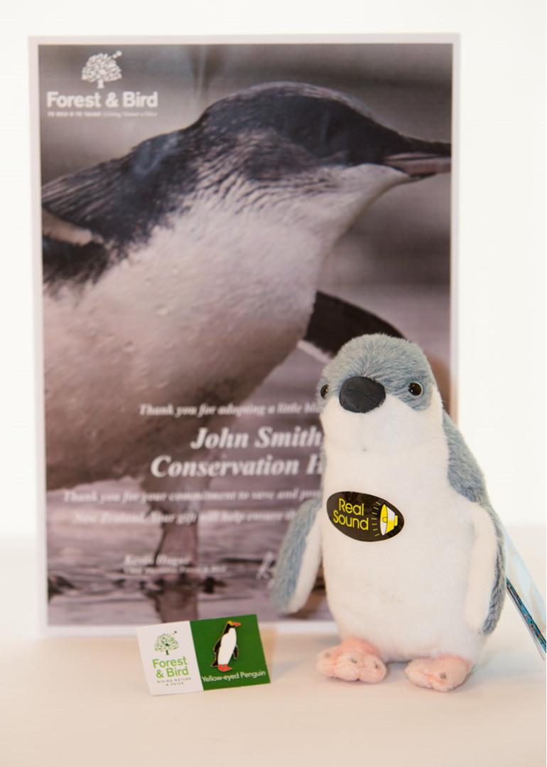 Little blue penguin adoption pack including plush penguin toy