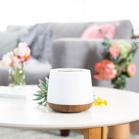 Lively Living Diffuser Aroma Home
