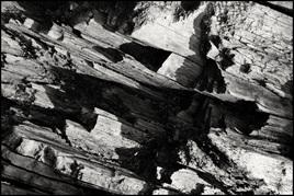 Log Abstract