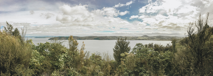 Lookout view Lake Taupo Kinlock