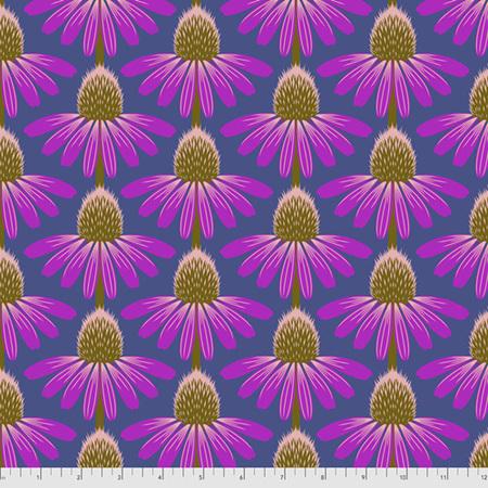 Love Always, AM Echinacea Haute PWAH075.Haute