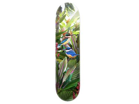 Lucy G Harmony, Kingfisher Skateboard Deck Art