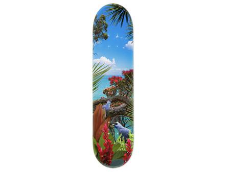 Lucy G Kokako's Call Skateboard Deck Art