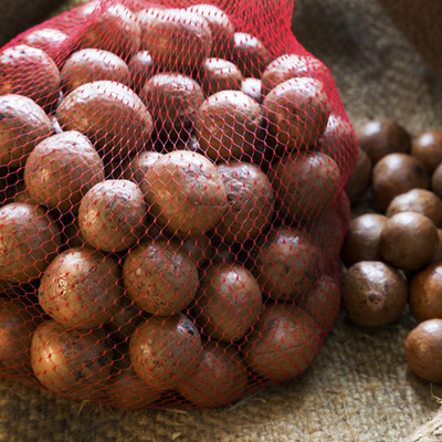 Macadamia Nut-in-Shell 1.0kg