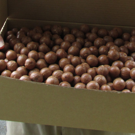 Macadamia Nut-in-Shell 4.5kg