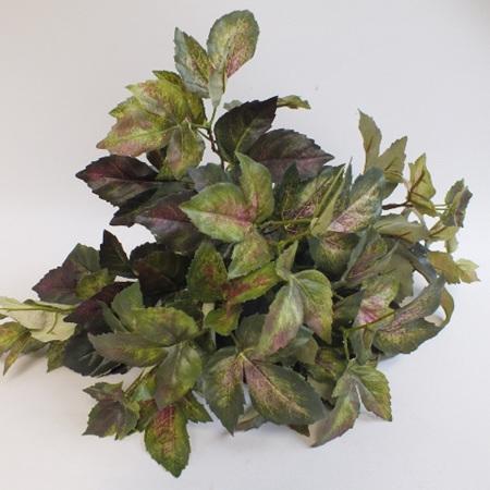 Maple Ivy Bush 1465
