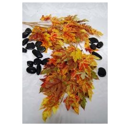 Autumn Maple Leaf 1207